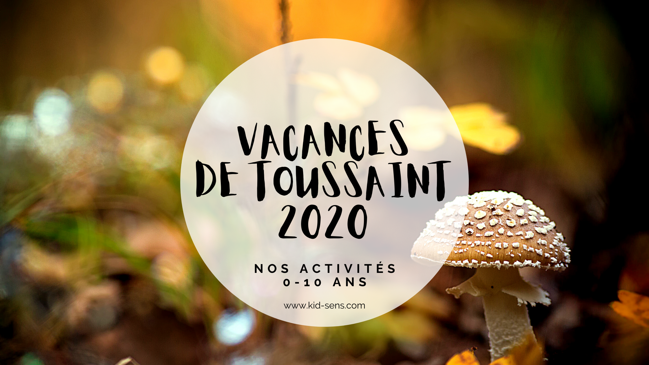 Activités enfant pendant les vacances de la Toussaint à Aix en Provence